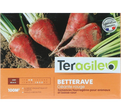 BETTERAVE ROUGE 250G TERAGILE