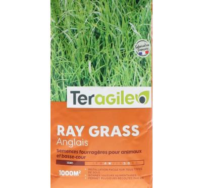 RAY GRASS ANGLAIS 10KG TERAGILE